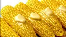 New York's finest Home Grown Corn on the Cob. Picked fresh daily.